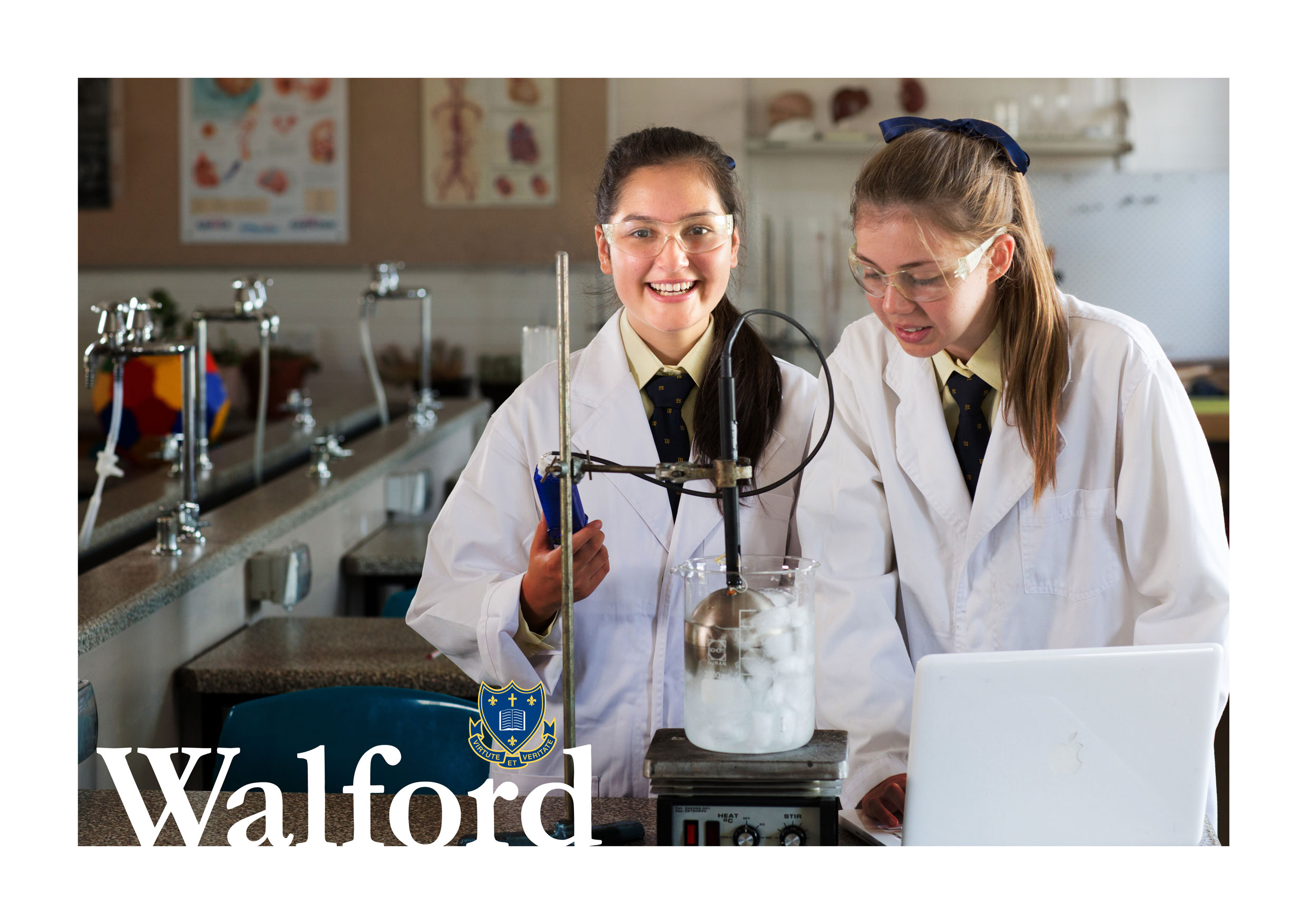 WALFORD-BRANDING-IMAGES_7